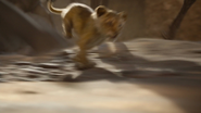 Lionking2019-animationscreencaps.com-4719