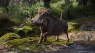 Lionking2019-animationscreencaps.com-8005