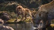 Lionking2019-animationscreencaps.com-9427