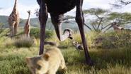 Lionking2019-animationscreencaps.com-2529