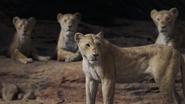 Lionking2019-animationscreencaps.com-7221