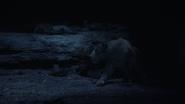 Lionking2019-animationscreencaps.com-7572