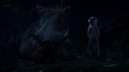 Lionking2019-animationscreencaps.com-8370