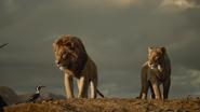 Lionking2019-animationscreencaps.com-10719