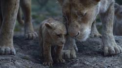 Lionking2019-animationscreencaps.com-5797