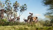 Lionking2019-animationscreencaps.com-2558