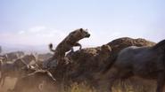 Lionking2019-animationscreencaps.com-4632
