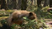 Lionking2019-animationscreencaps.com-8990