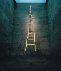 Ladder for booker t. washington