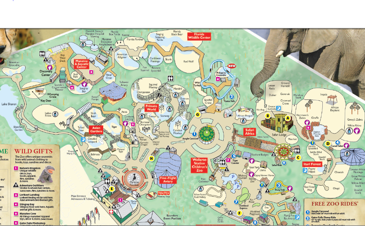 Lowry Park Zoo Map Tampa's Lowry Park Zoo | List of Major Zoos in the U.S. Wiki