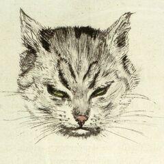 «Le Chat»