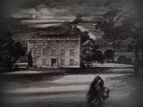 The Mezzotint