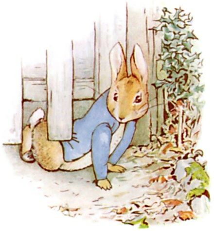 Image result for peter rabbit original