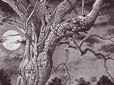 The Ash-tree