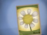 Пакет семян моментального использования