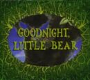 Good Night, Little Bear