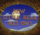 How Little Bear Met Owl