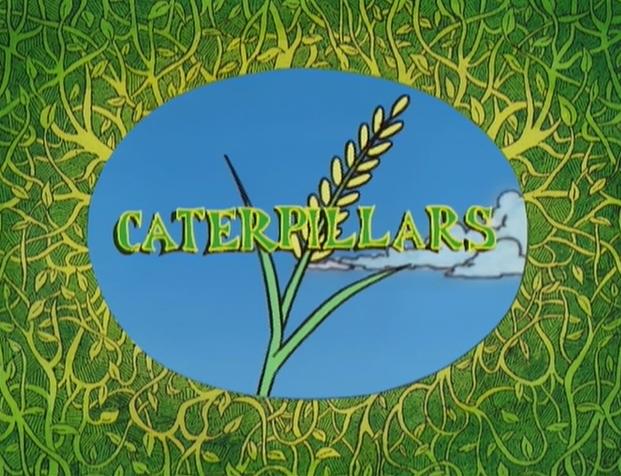 File:Caterpillars.png