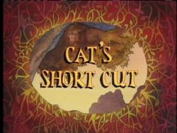 Cat's Short Cut