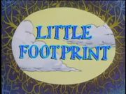 LittleFootprint