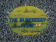 The Blueberry Picnic
