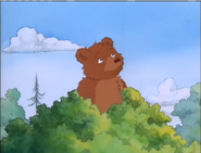 Little Bear is Bigger than the Trees