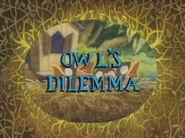 Owl's Dilemma