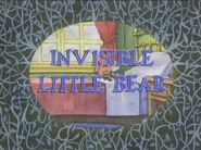 Invisible Little Bear