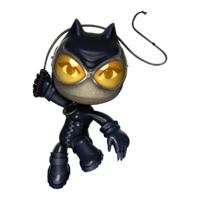 CatwomanPose