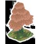 Icon tree1