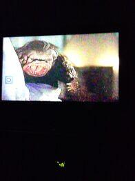 Monkey Ghoulie