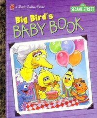 Big birds baby book
