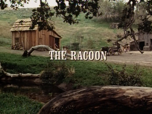 File:Title.raccoon.jpg