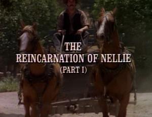 Title.reincarnationofnellie1