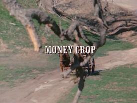 Title.moneycrop