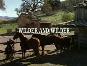 Title.wilderandwilder