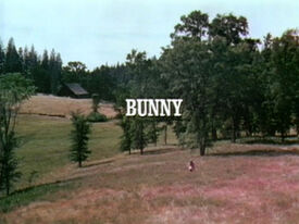 Title.bunny