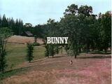 Episode 303: Bunny