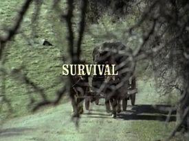 Title.survival