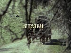 File:Title.survival.jpg