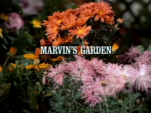 Title.marvinsgarden
