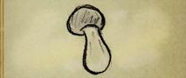 Mushssie