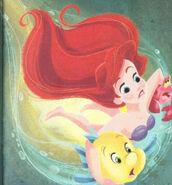 Ariel 556