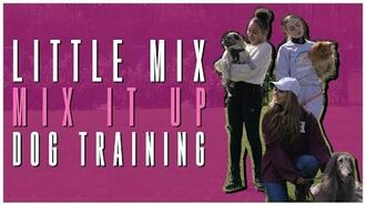 Little Mix - Mix It Up- Dog Training