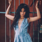 Camila button