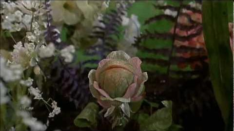 Little Shop Of Horrors (1986) Theatrical Ending
