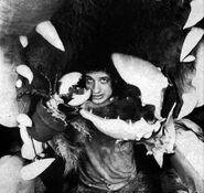 Little Shop of Horrors 1982 - Martin P. Robinson inside Audrey II