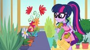 My Little Pony Equestria Girls My Little Shop of Horrors Twilight Sparkle & the flowers