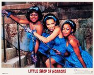 Little Shop of Horrors Lobby Card 01 Michelle Weeks Tischa Campbell Tichina Arnold