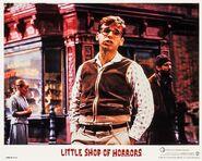 Little Shop of Horrors Lobby Card 07 Rick Moranis